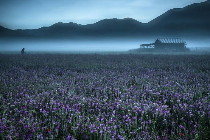 © Massimo Tommi: Il risveglio dell'altopiano
